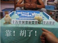 打麻将是一种非常考验智力的游戏